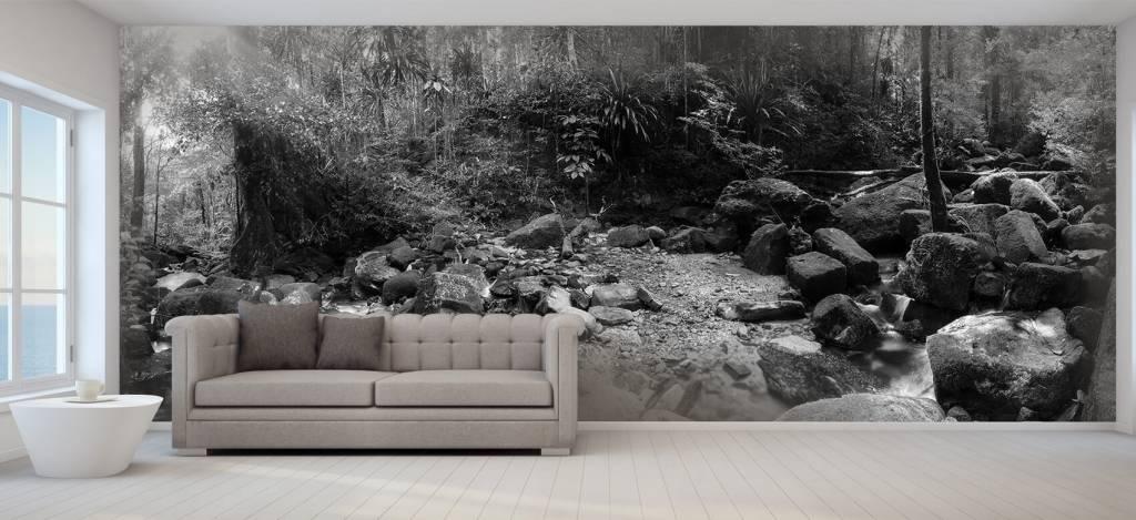 Bos behang - Regenwoud - Vergaderruimte 8