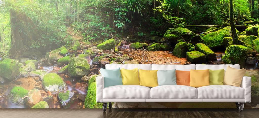 Bos behang - Regenwoud - Vergaderruimte 9