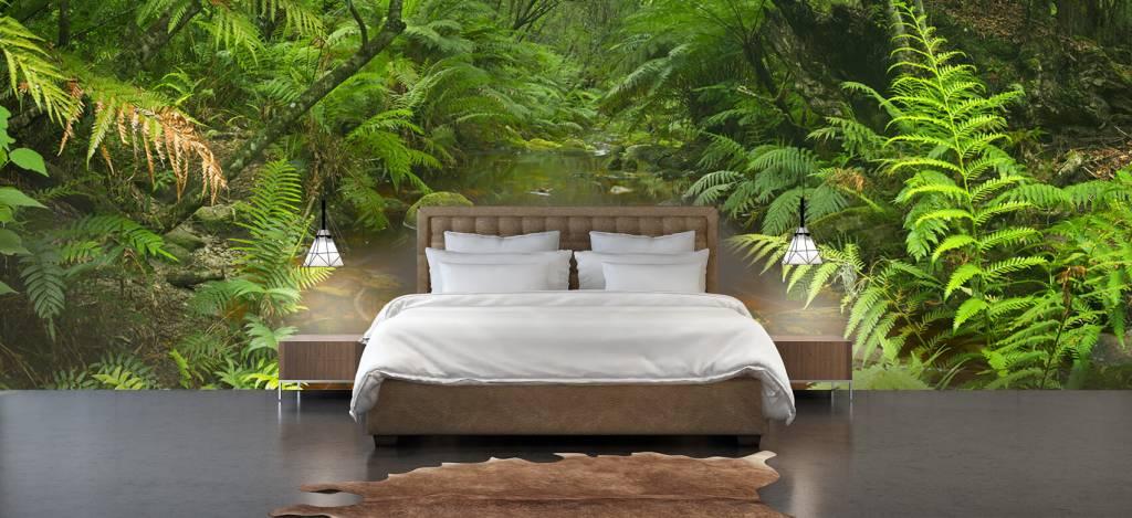 Bomen - Riviertje in het regenwoud - Hobbykamer 3