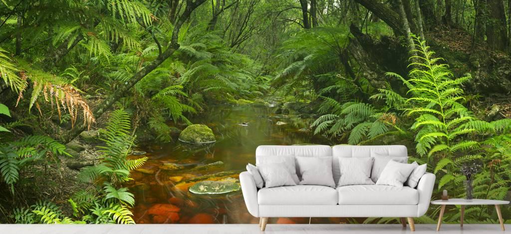 Bomen - Riviertje in het regenwoud - Hobbykamer 5