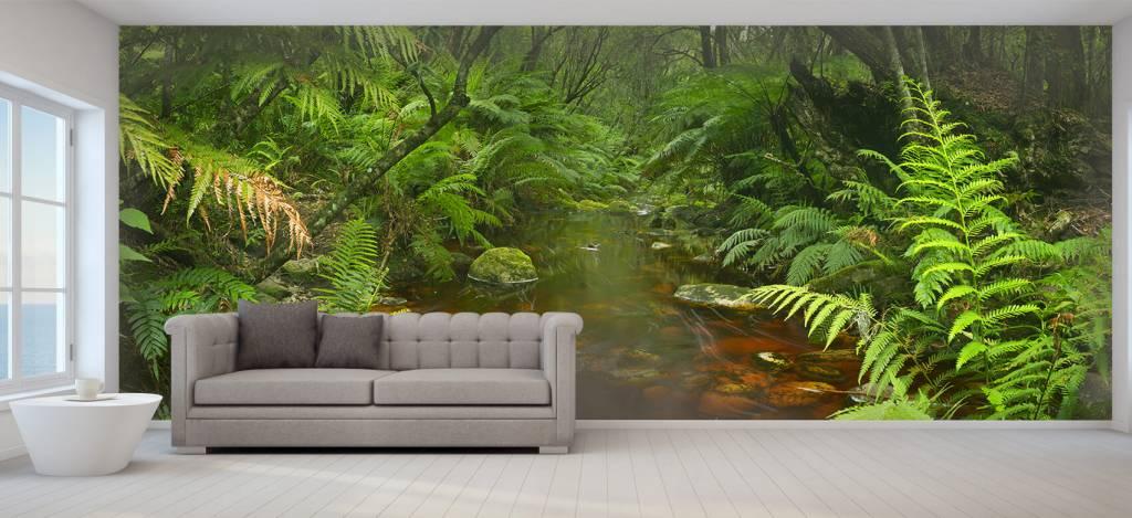 Bomen - Riviertje in het regenwoud - Hobbykamer 6