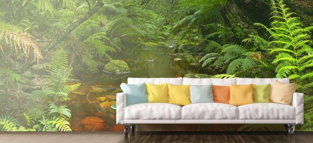 Bomen - Riviertje in het regenwoud - Hobbykamer 7