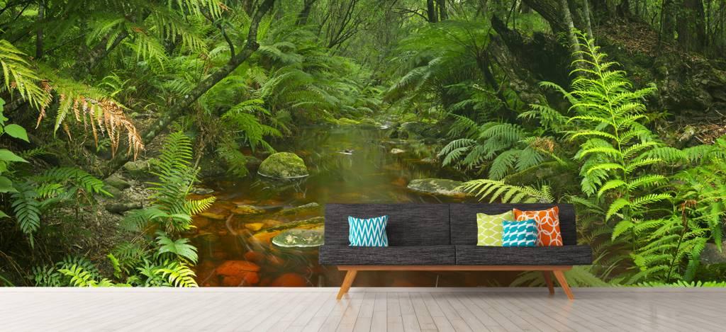 Bomen - Riviertje in het regenwoud - Hobbykamer 8