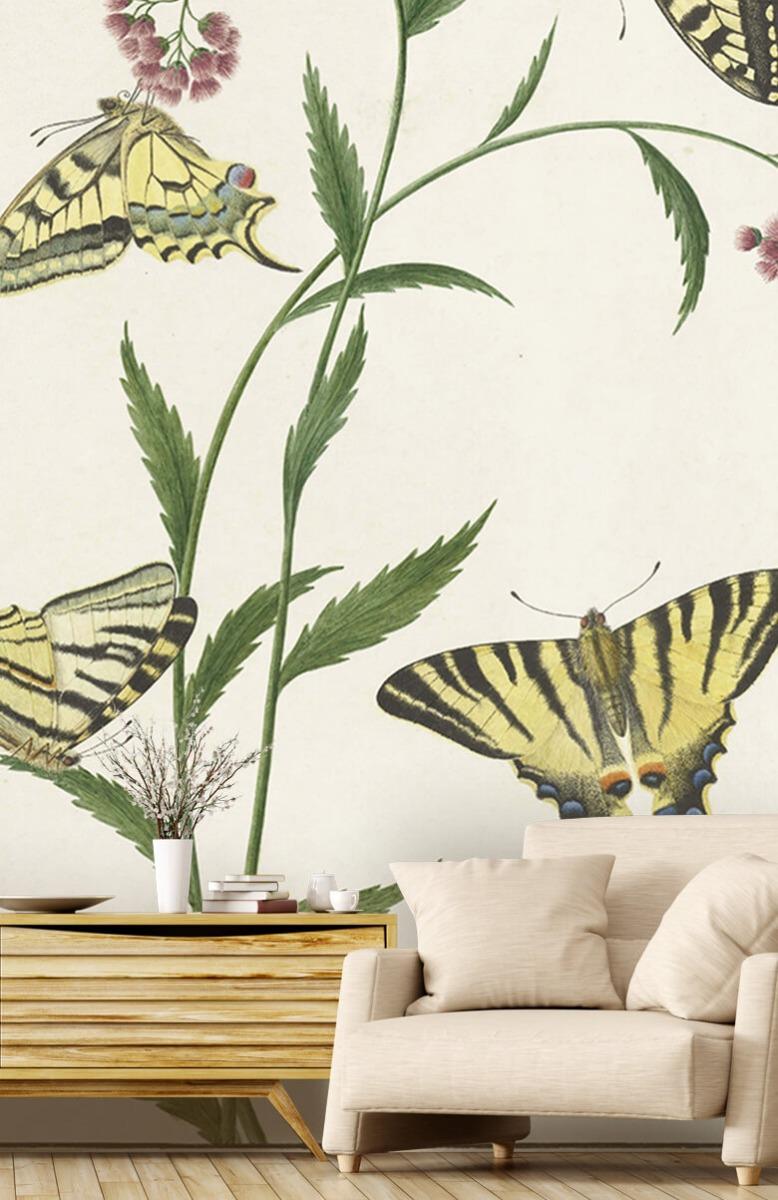 Kunst Vier vlinders op bloemen, Paulus Knogh 1