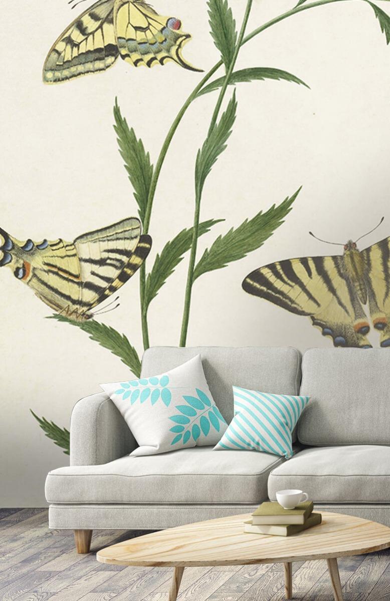 Kunst Vier vlinders op bloemen, Paulus Knogh 2