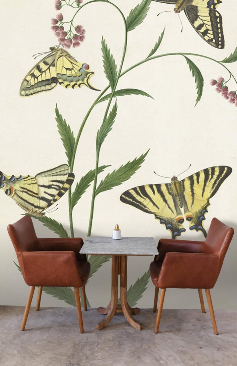 Kunst Vier vlinders op bloemen, Paulus Knogh 3