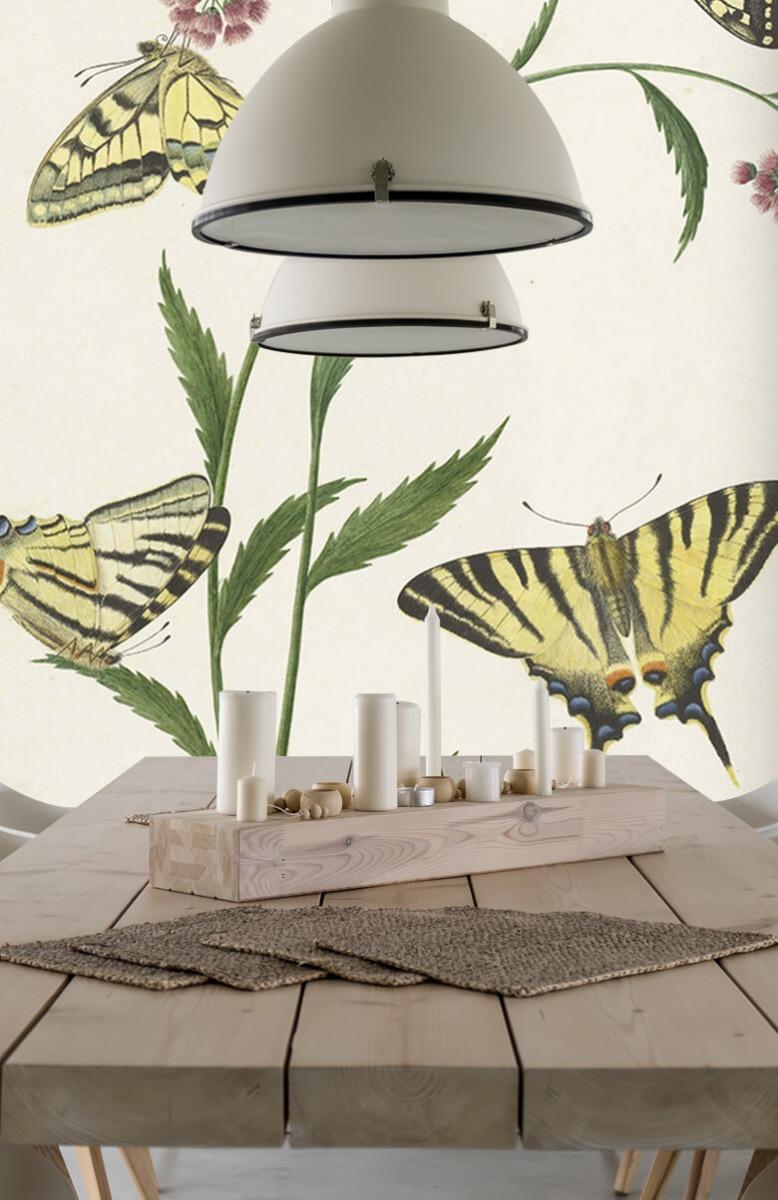 Kunst Vier vlinders op bloemen, Paulus Knogh 4