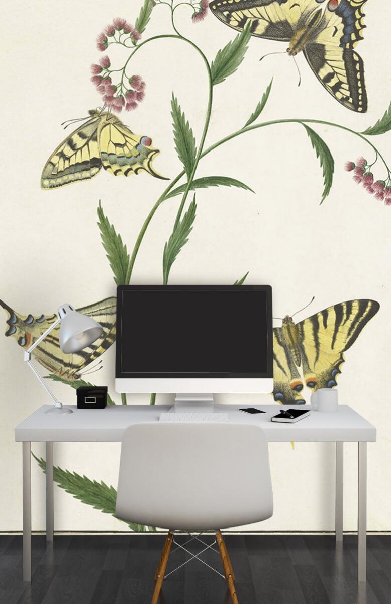 Kunst Vier vlinders op bloemen, Paulus Knogh 10