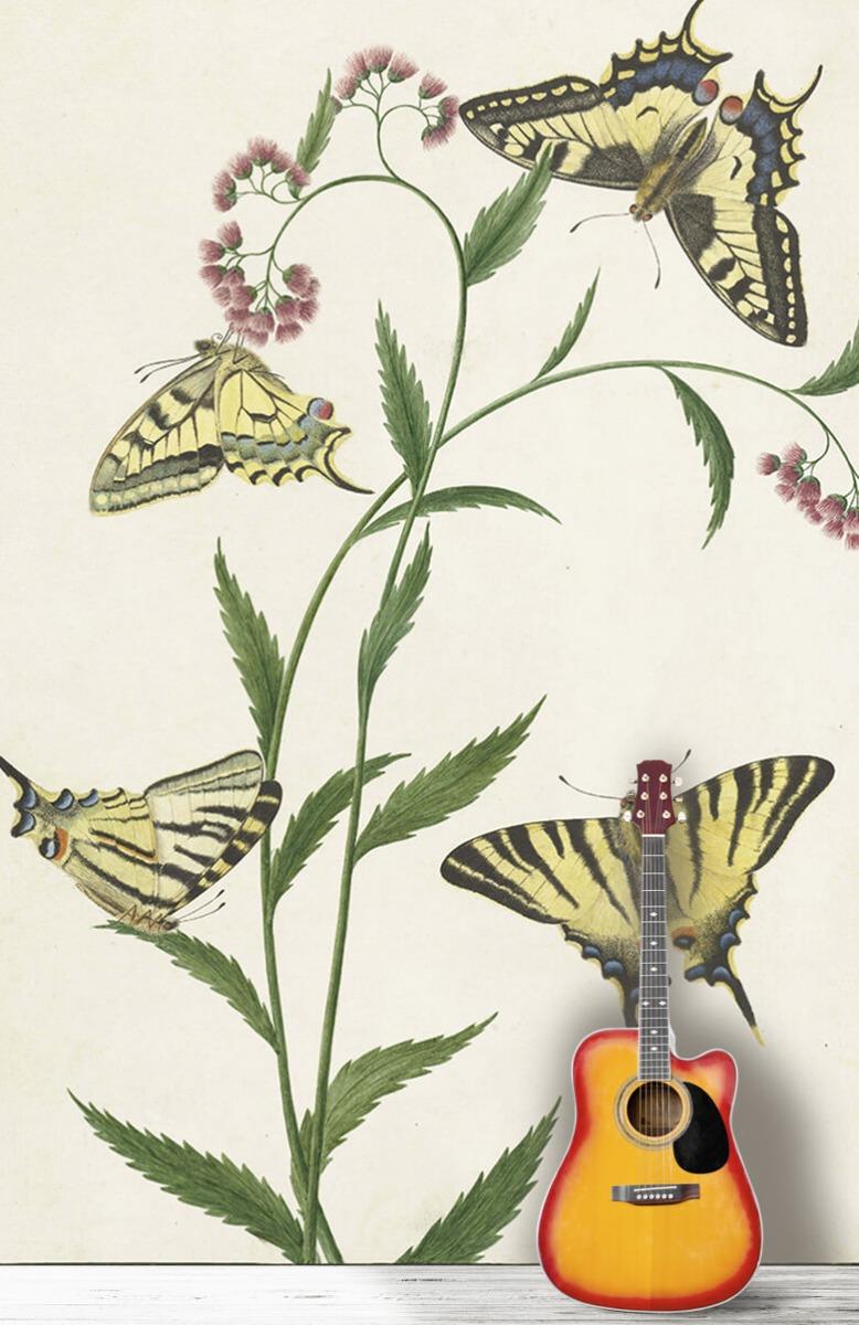 Kunst Vier vlinders op bloemen, Paulus Knogh 11