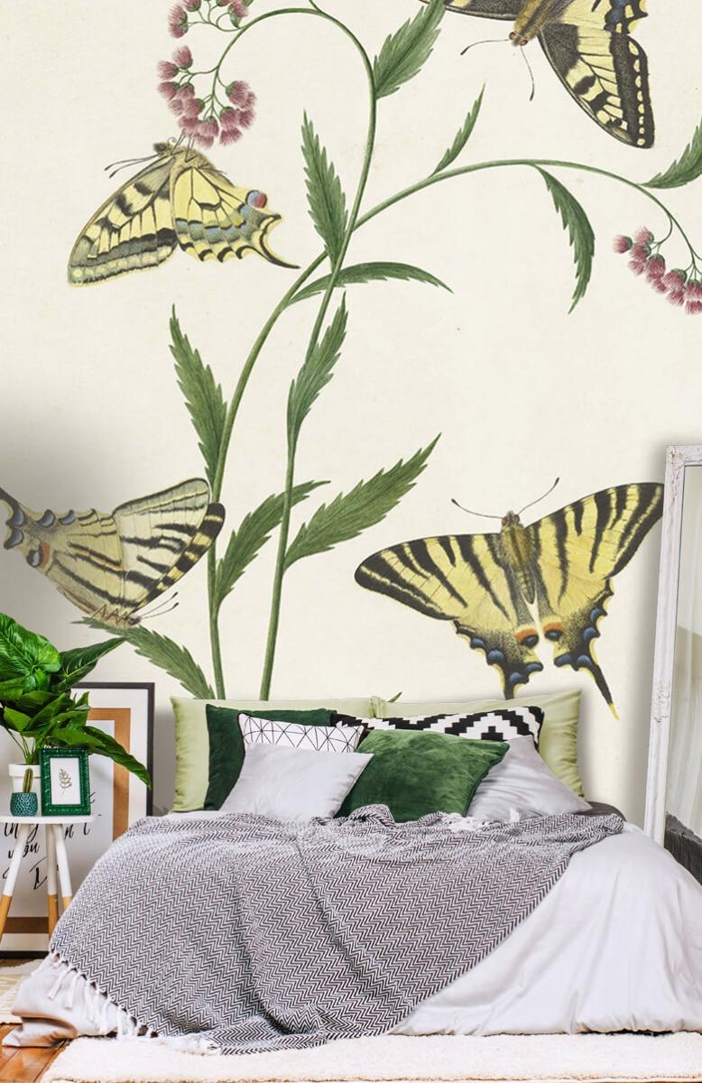 Kunst Vier vlinders op bloemen, Paulus Knogh 13