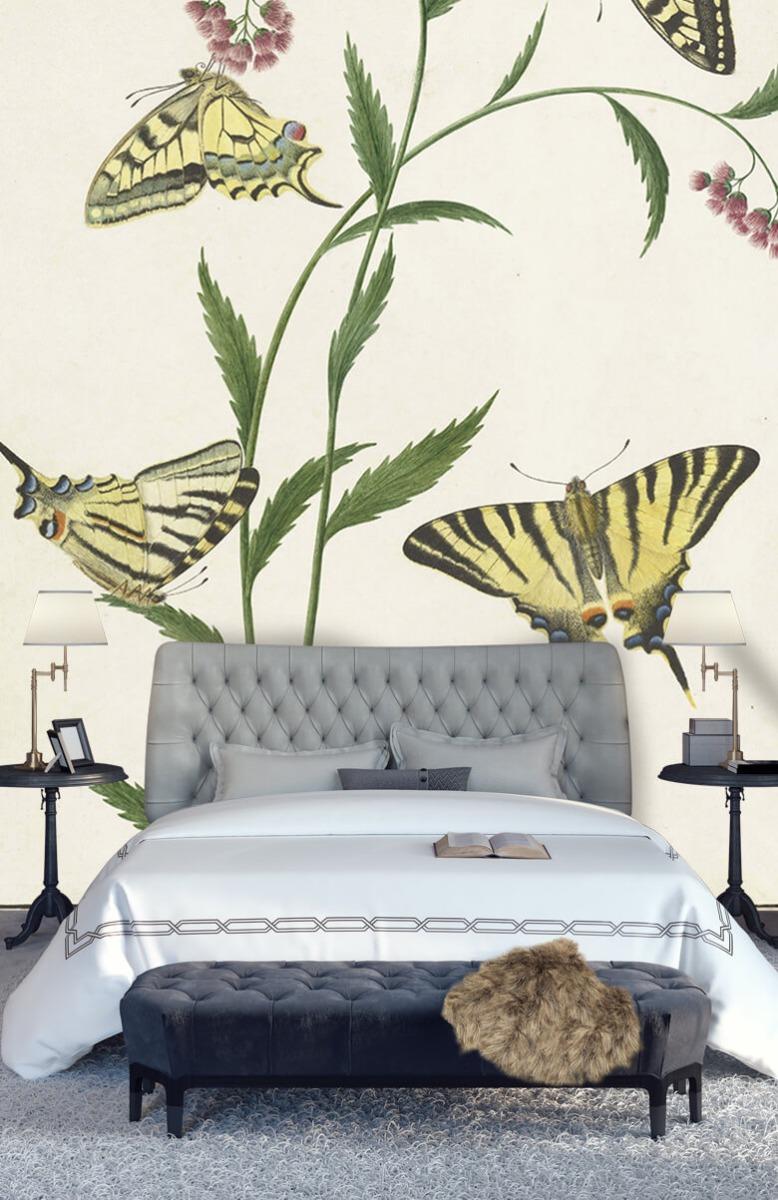 Kunst Vier vlinders op bloemen, Paulus Knogh 14