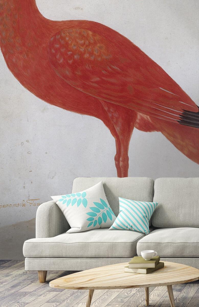 Overige - Rode Ibis met een ei - Keuken 2