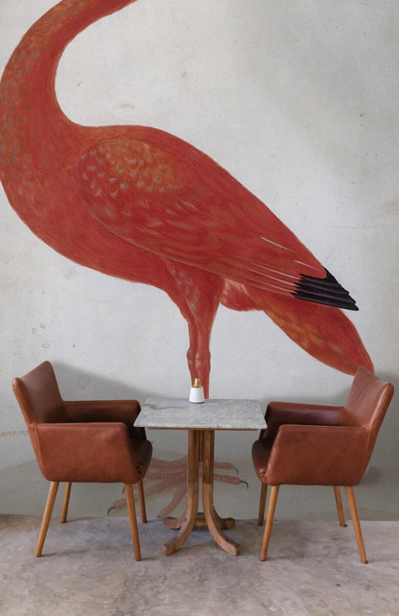 Overige - Rode Ibis met een ei - Keuken 3