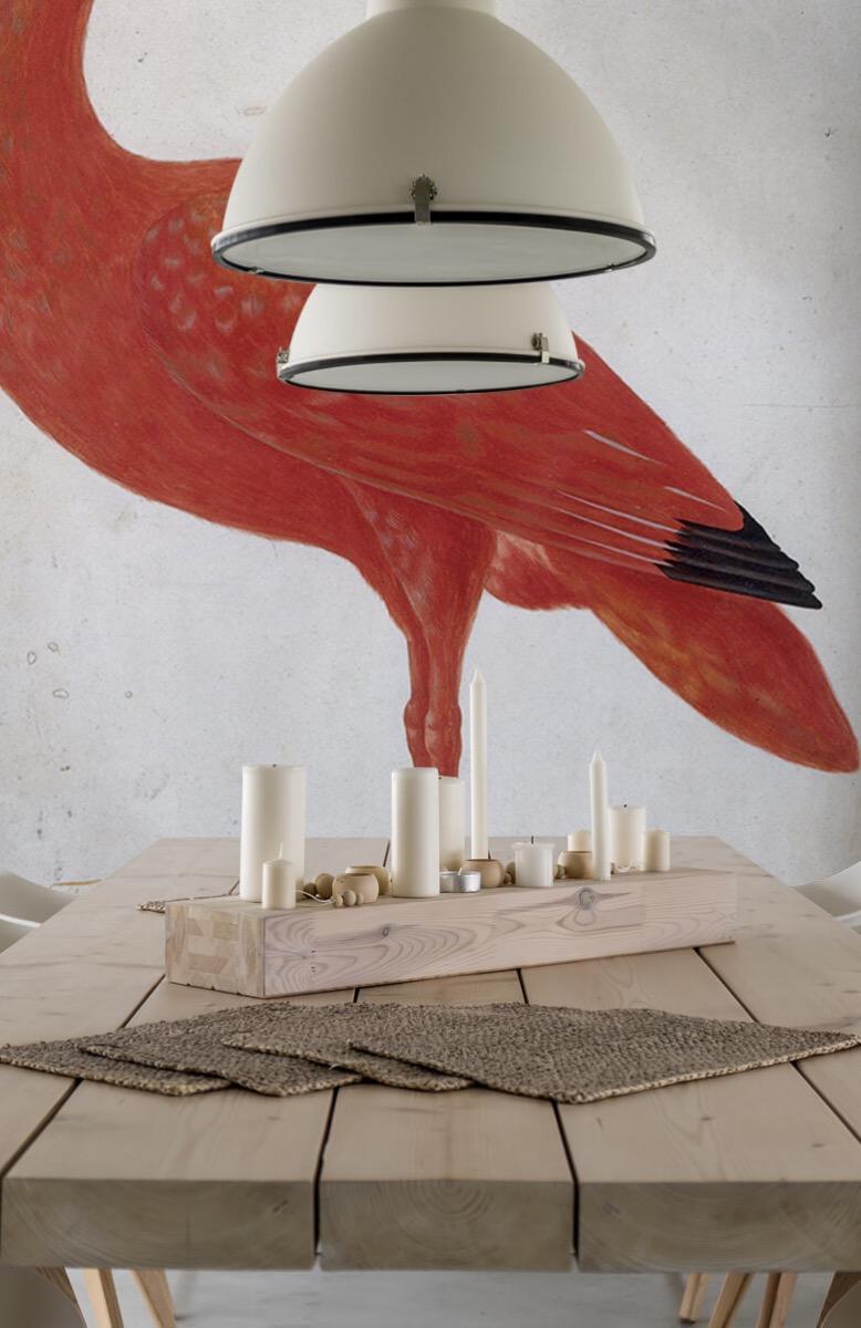 Overige - Rode Ibis met een ei - Keuken 4