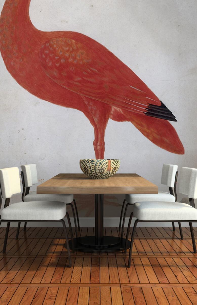 Overige - Rode Ibis met een ei - Keuken 5