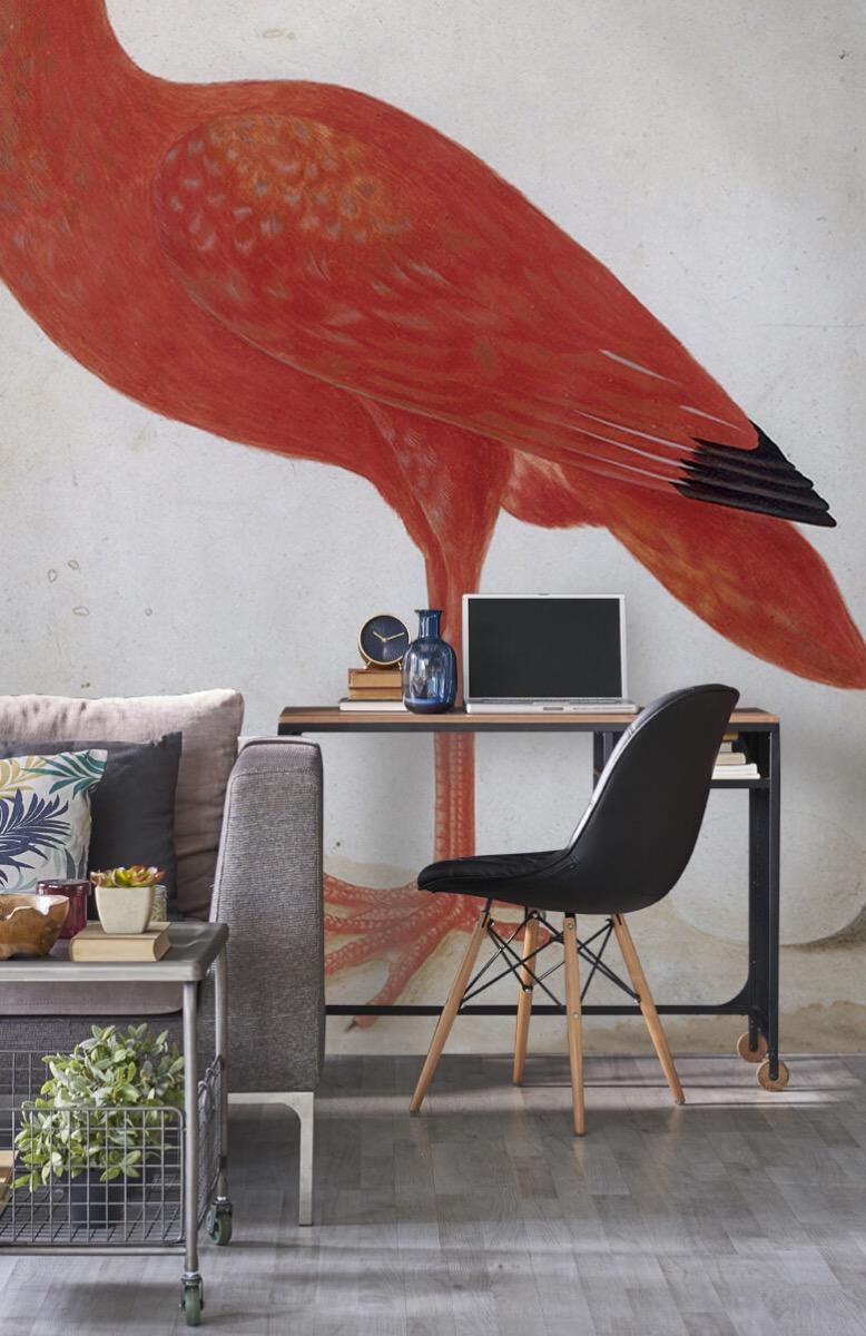 Overige - Rode Ibis met een ei - Keuken 8