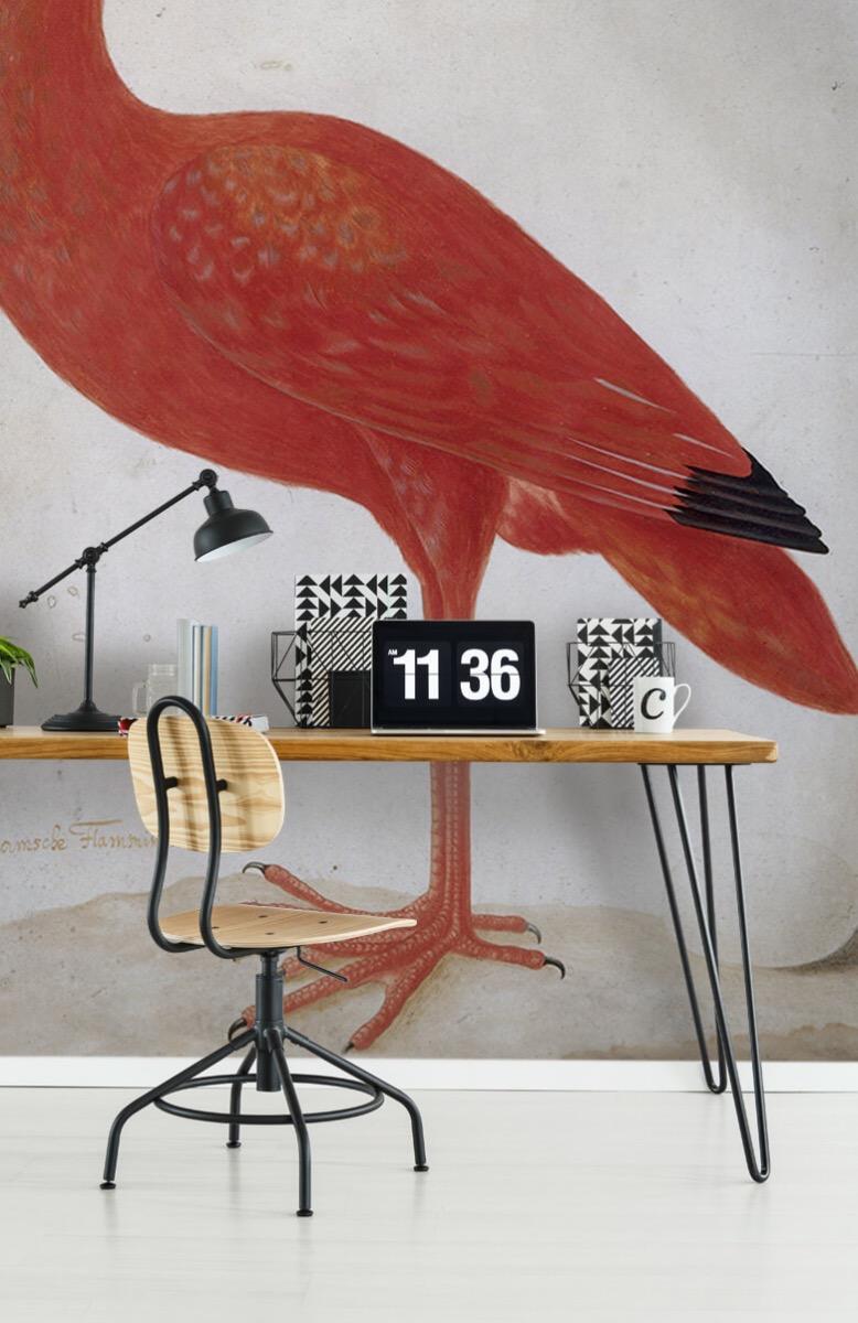 Overige - Rode Ibis met een ei - Keuken 9