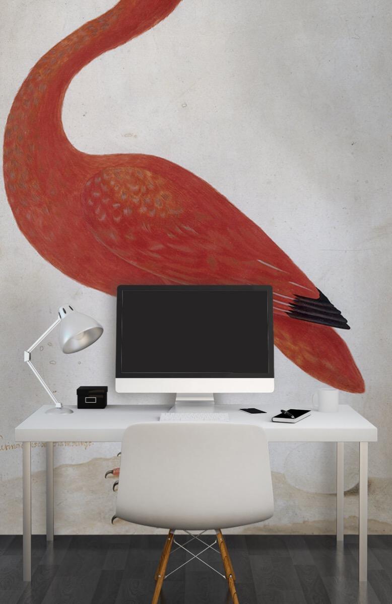 Overige - Rode Ibis met een ei - Keuken 10