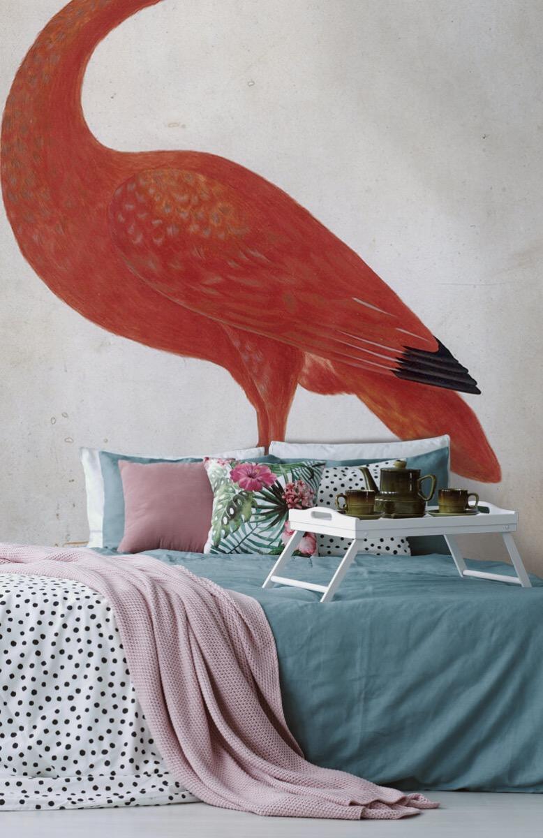 Overige - Rode Ibis met een ei - Keuken 12