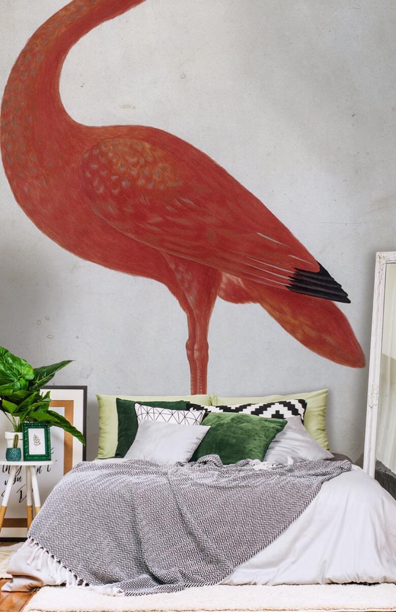 Overige - Rode Ibis met een ei - Keuken 13