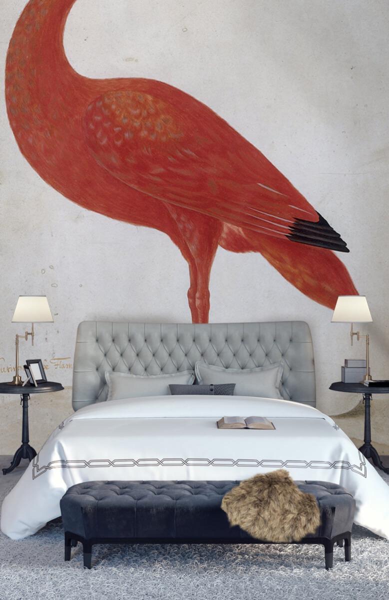 Overige - Rode Ibis met een ei - Keuken 14