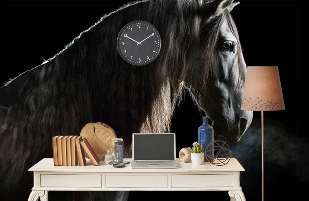 Paarden - Schimmel met zwarte achtergrond - Tienerkamer 6