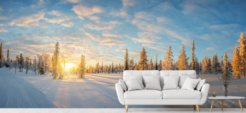 Winter - Sneeuwlandschap bij zonsondergang - Kantine 5