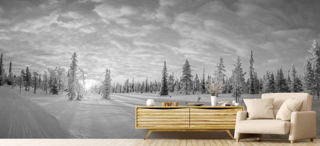 Winter - Sneeuwlandschap bij zonsondergang - Kantine 7