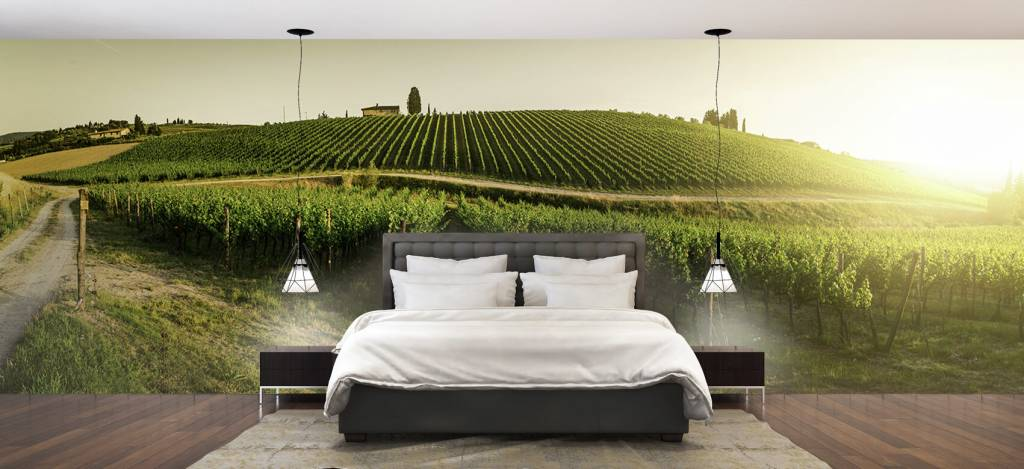 Landschap - Toscaanse wijngaard - Kantine 2