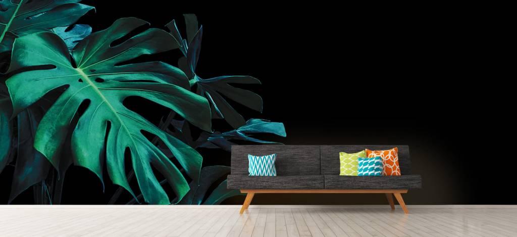 Bladeren - Tropische bladeren op zwarte achtergrond - Slaapkamer 1