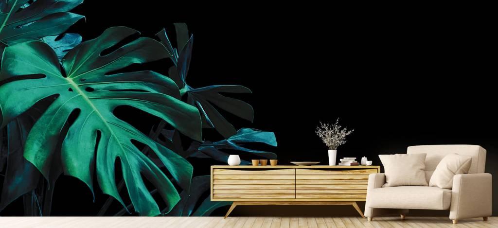 Bladeren - Tropische bladeren op zwarte achtergrond - Slaapkamer 2