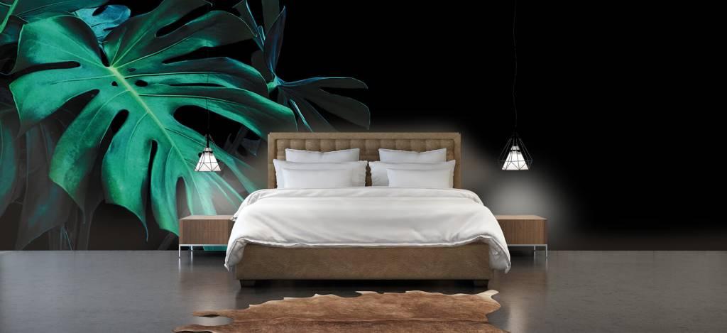 Bladeren - Tropische bladeren op zwarte achtergrond - Slaapkamer 5