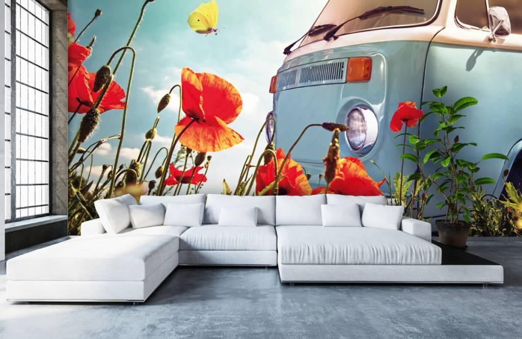 Transport - Vintage Volkswagen busje - Garage 5