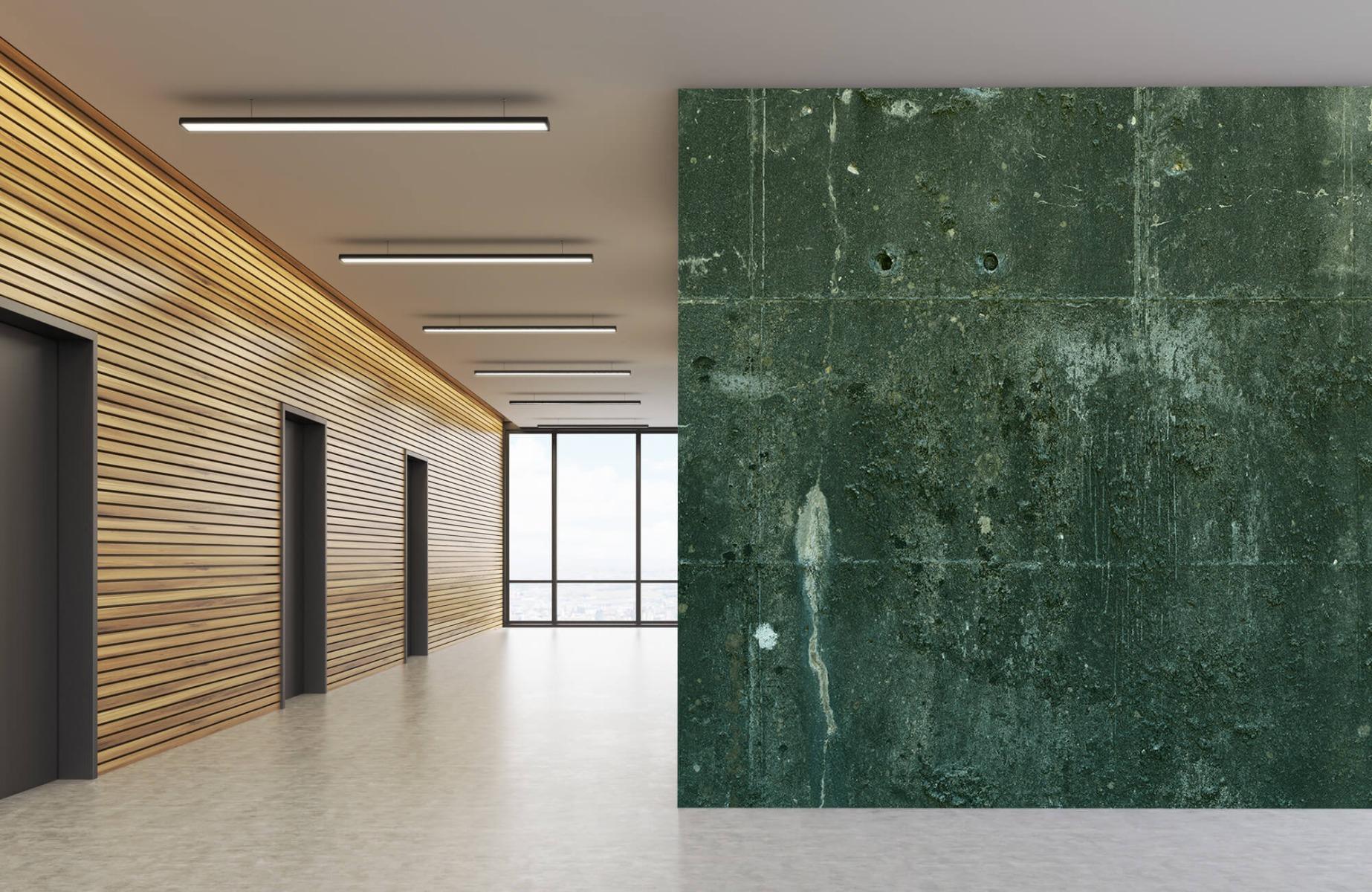Betonlook behang - Groen betonlook - Hal 7