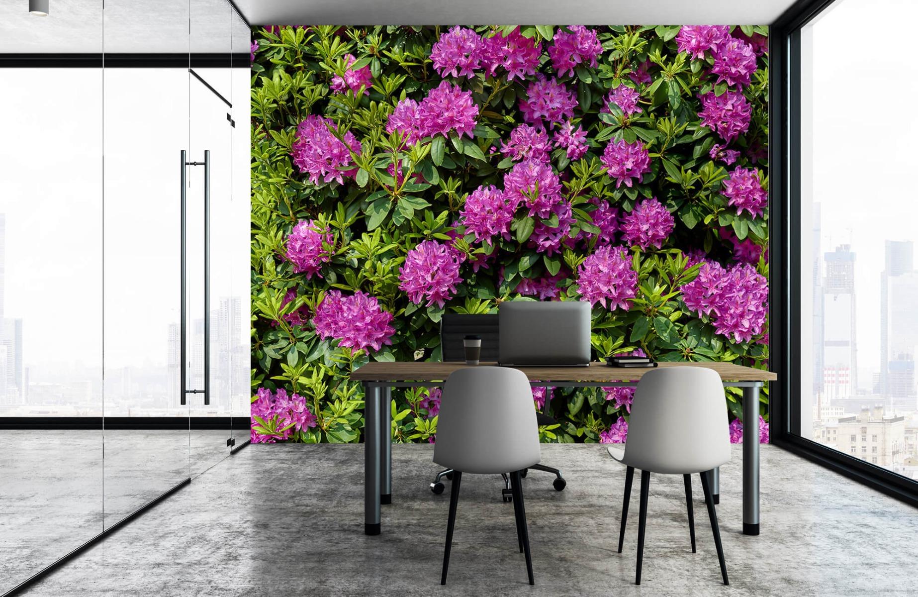 Bloemenvelden - Rododendrons - Wallexclusive - Slaapkamer 3