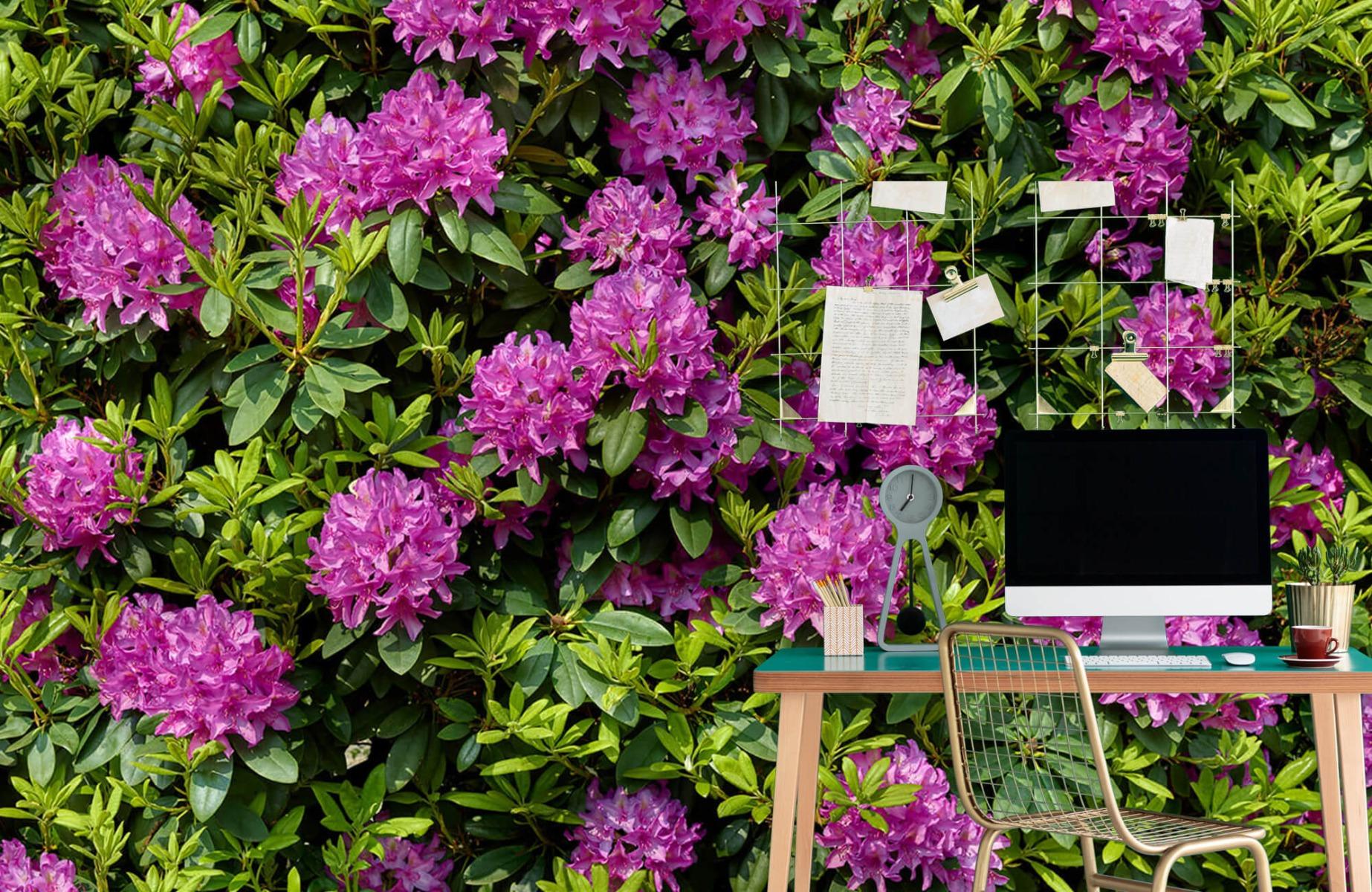 Bloemenvelden - Rododendrons - Wallexclusive - Slaapkamer 8