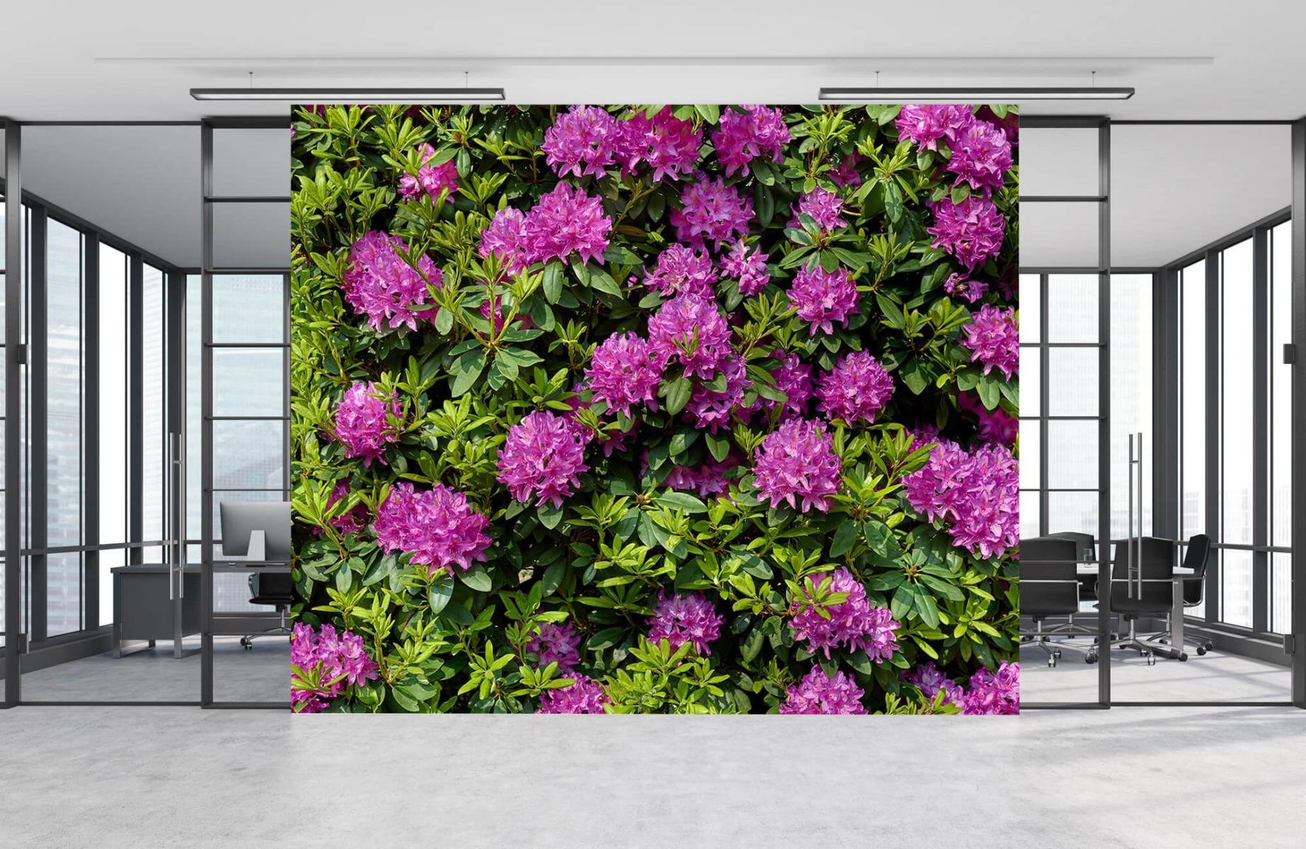 Bloemenvelden - Rododendrons - Wallexclusive - Slaapkamer 9