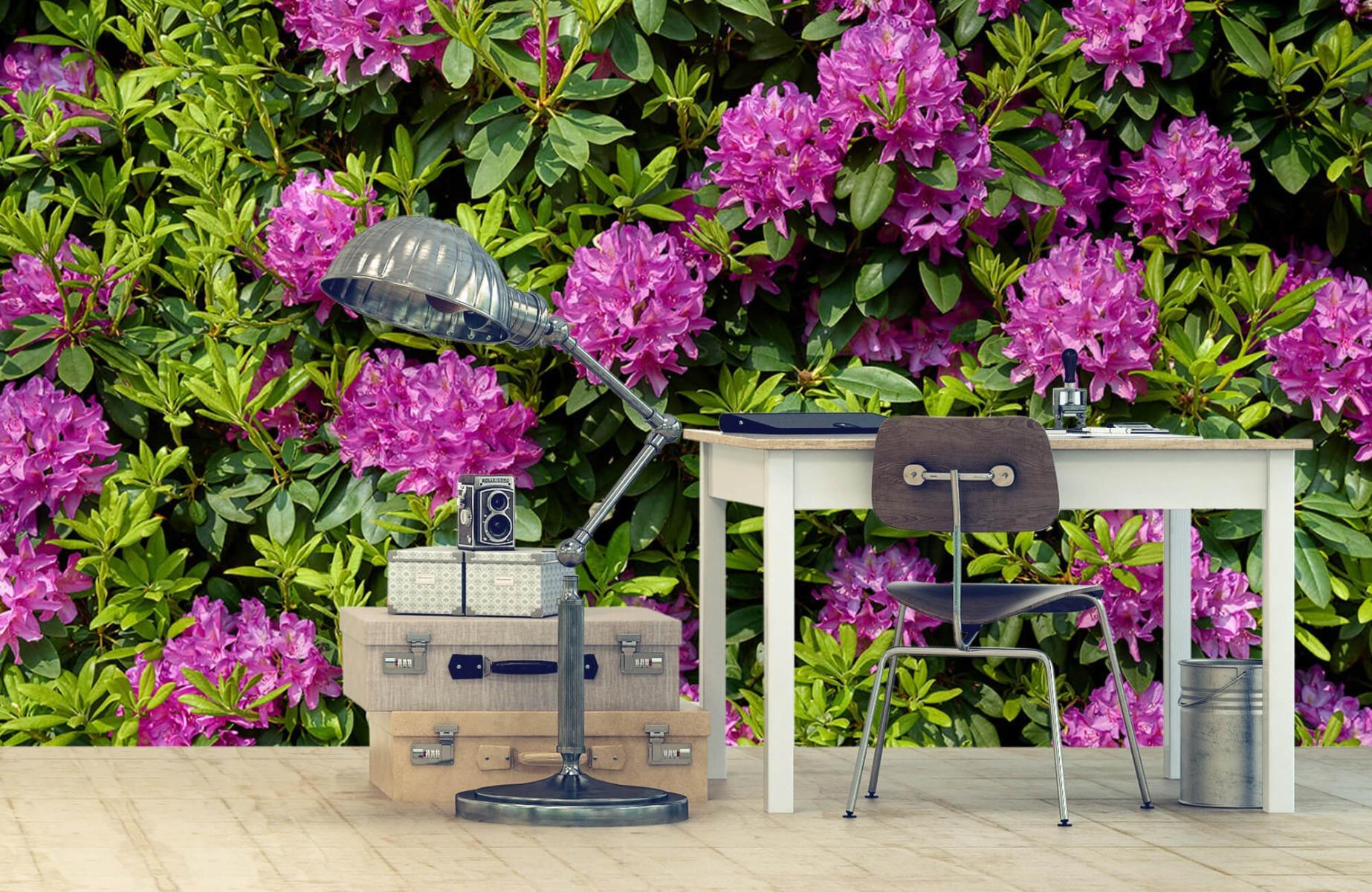 Bloemenvelden - Rododendrons - Wallexclusive - Slaapkamer 10