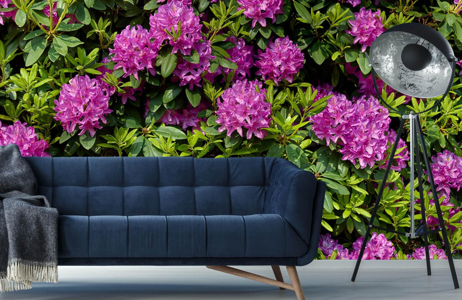 Bloemenvelden - Rododendrons - Wallexclusive - Slaapkamer 11