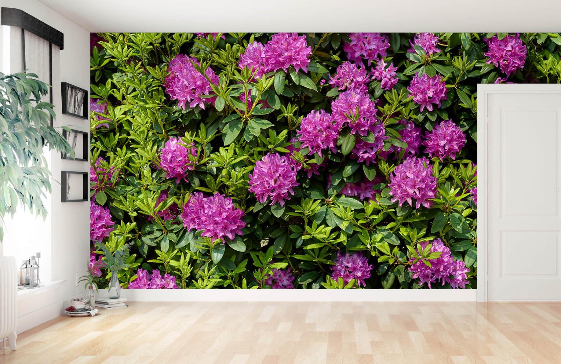 Bloemenvelden - Rododendrons - Wallexclusive - Slaapkamer 12