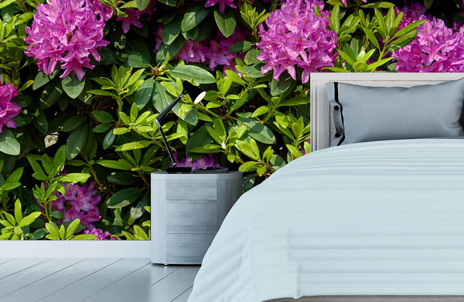 Bloemenvelden - Rododendrons - Wallexclusive - Slaapkamer 13