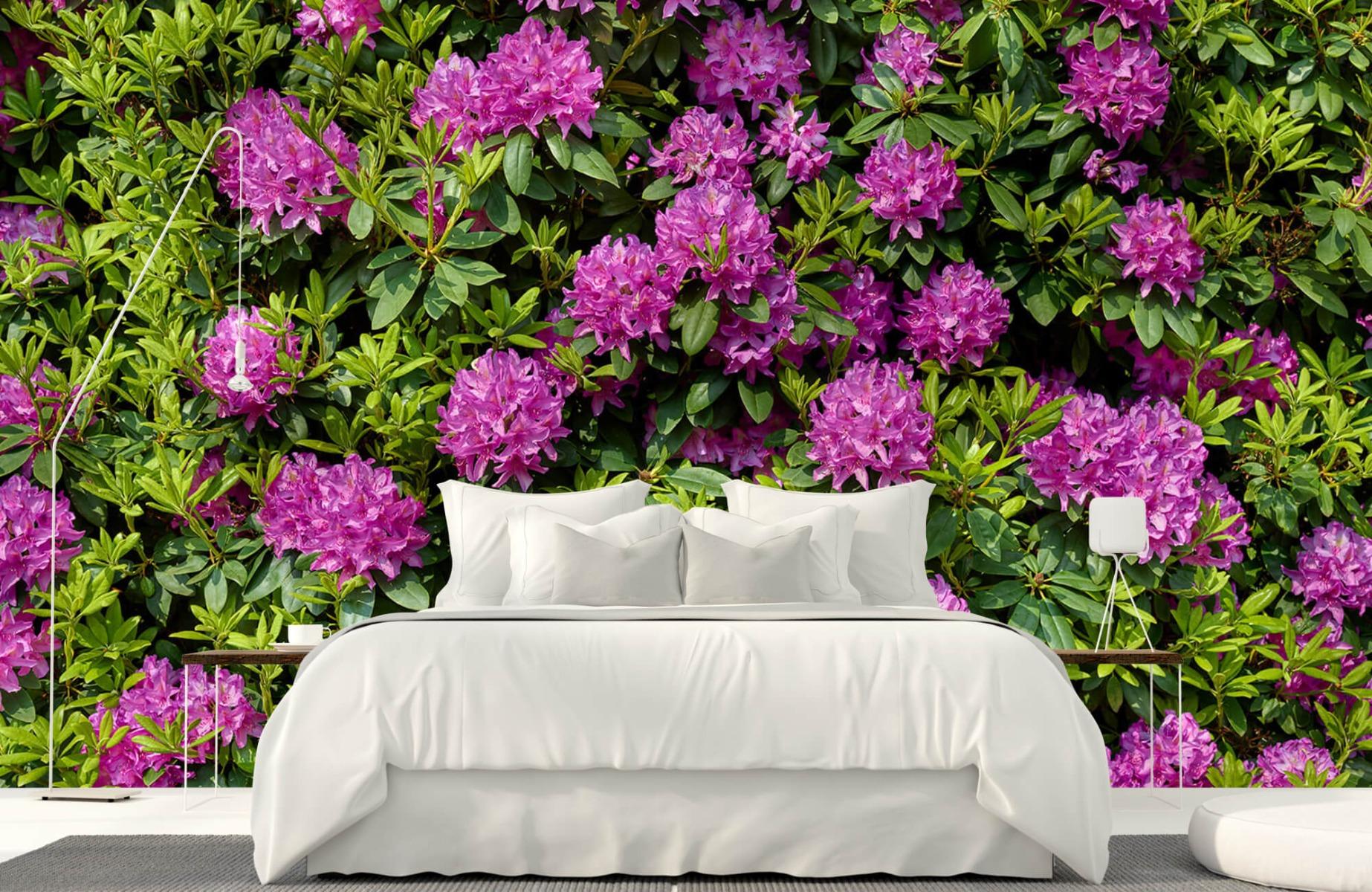 Bloemenvelden - Rododendrons - Wallexclusive - Slaapkamer 17