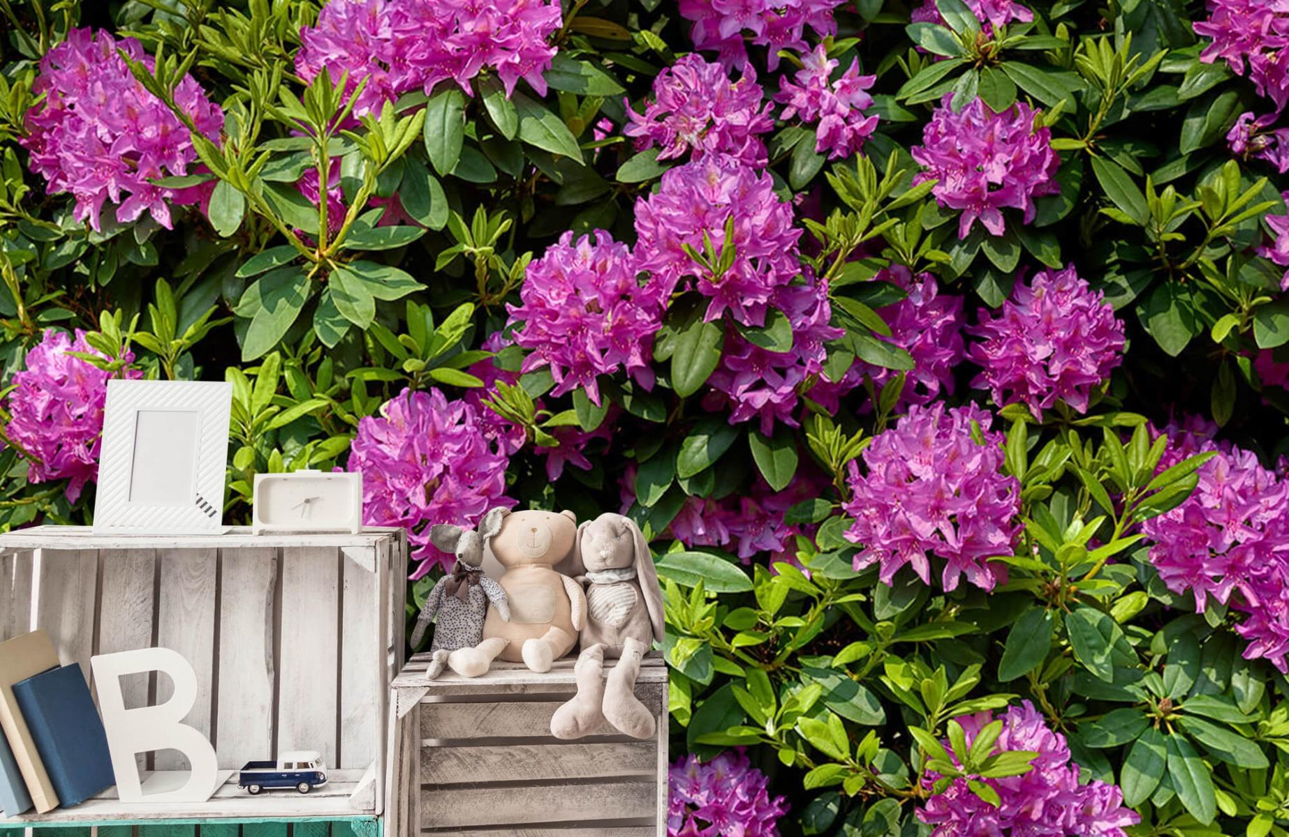 Bloemenvelden - Rododendrons - Wallexclusive - Slaapkamer 20