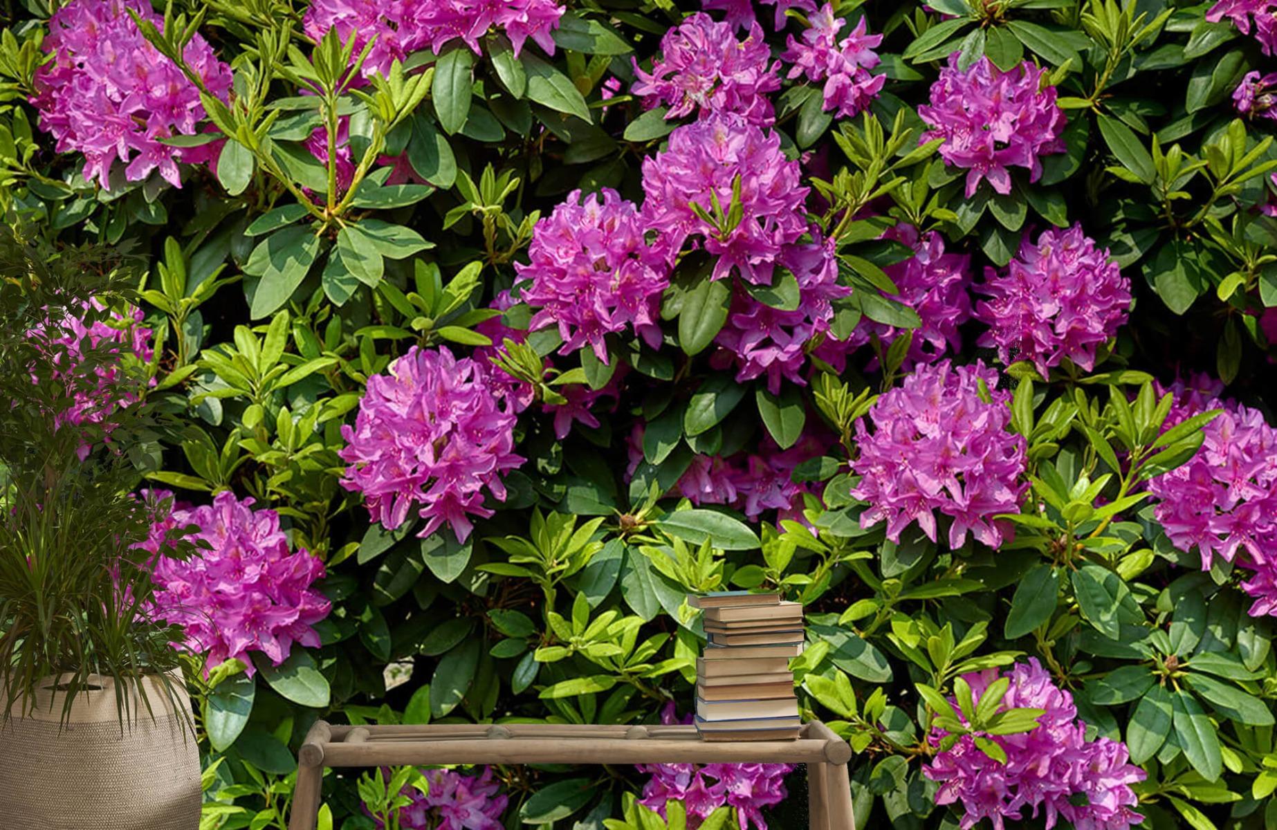Bloemenvelden - Rododendrons - Wallexclusive - Slaapkamer 21