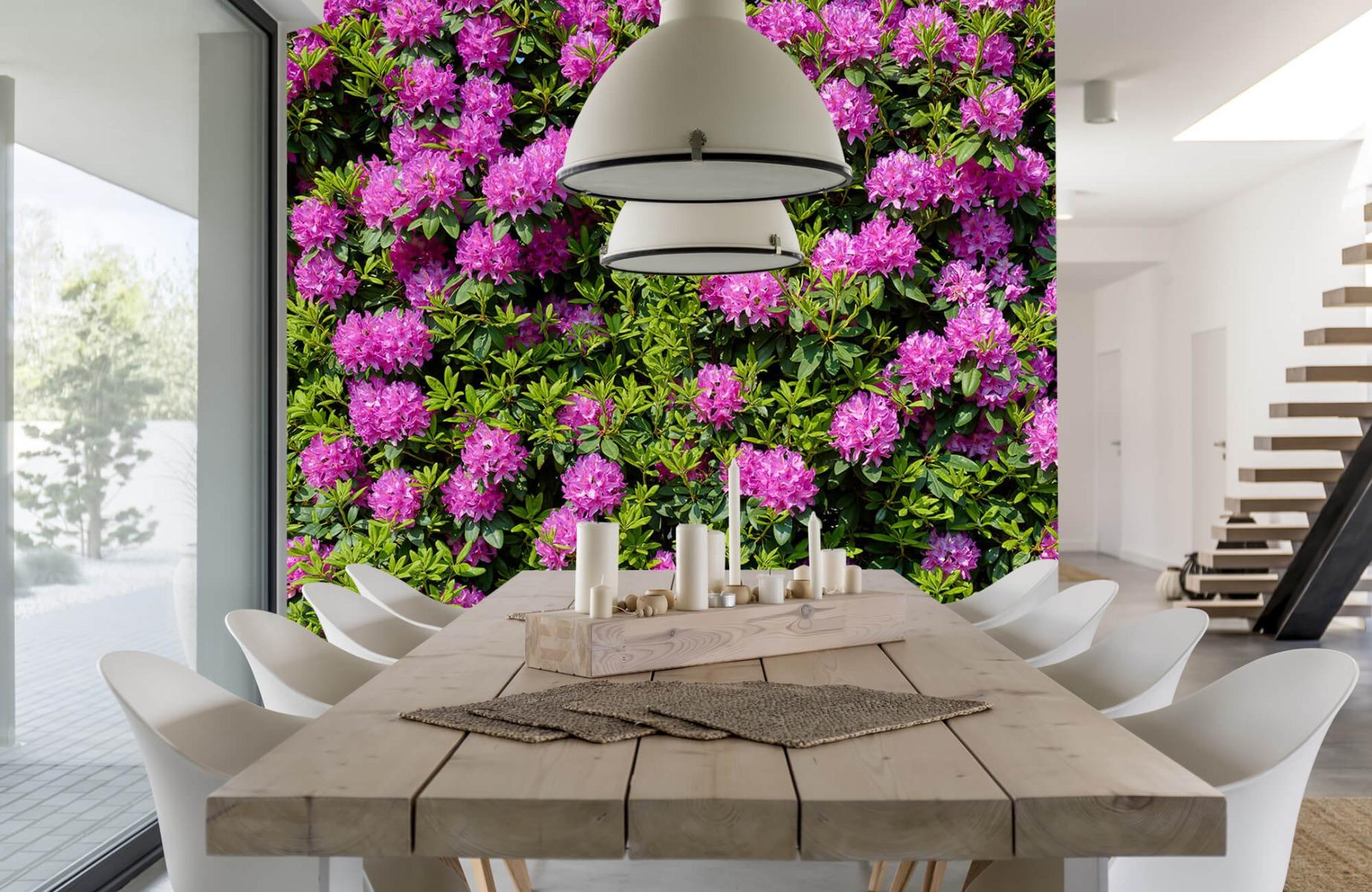 Bloemenvelden - Grote muur van rododendrons - Wallexclusive - Woonkamer 2