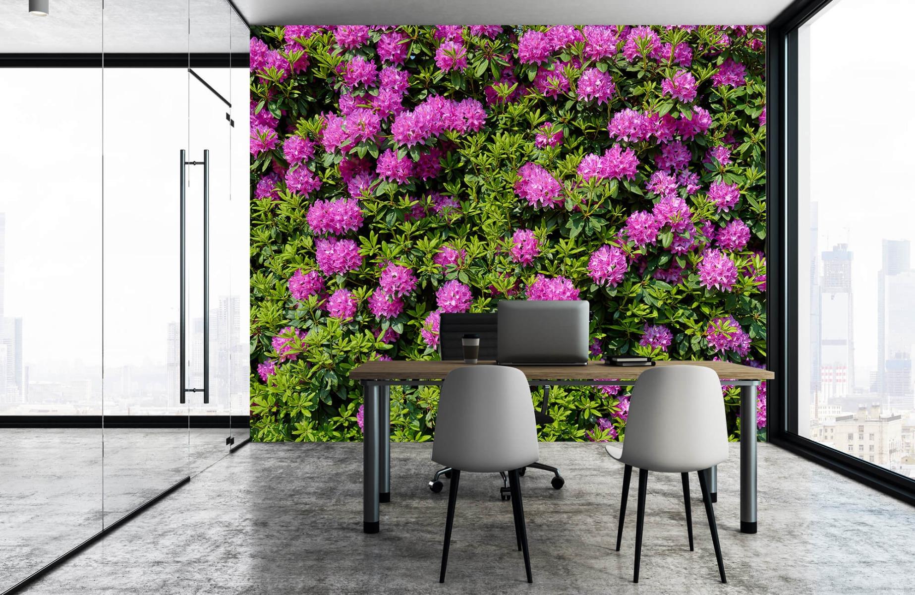 Bloemenvelden - Grote muur van rododendrons - Wallexclusive - Woonkamer 4
