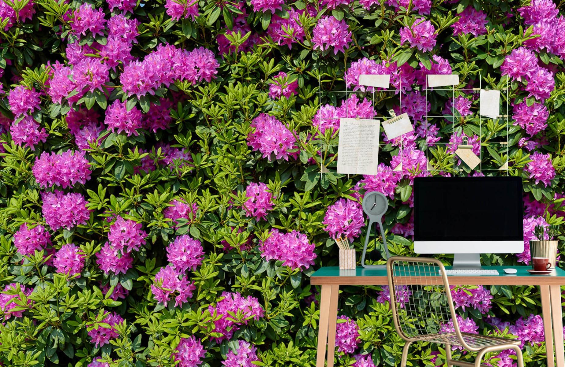 Bloemenvelden - Grote muur van rododendrons - Wallexclusive - Woonkamer 8