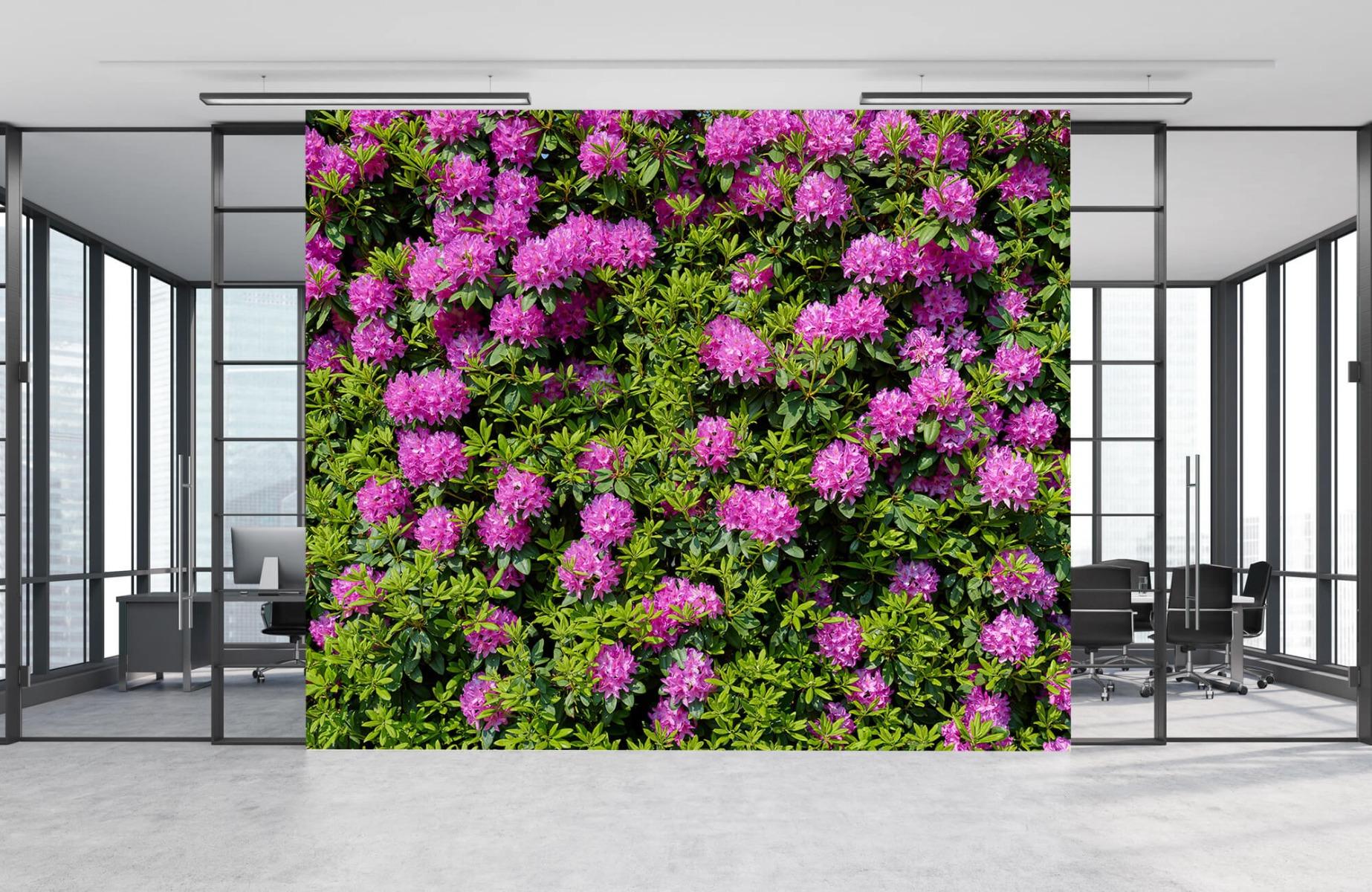 Bloemenvelden - Grote muur van rododendrons - Wallexclusive - Woonkamer 9