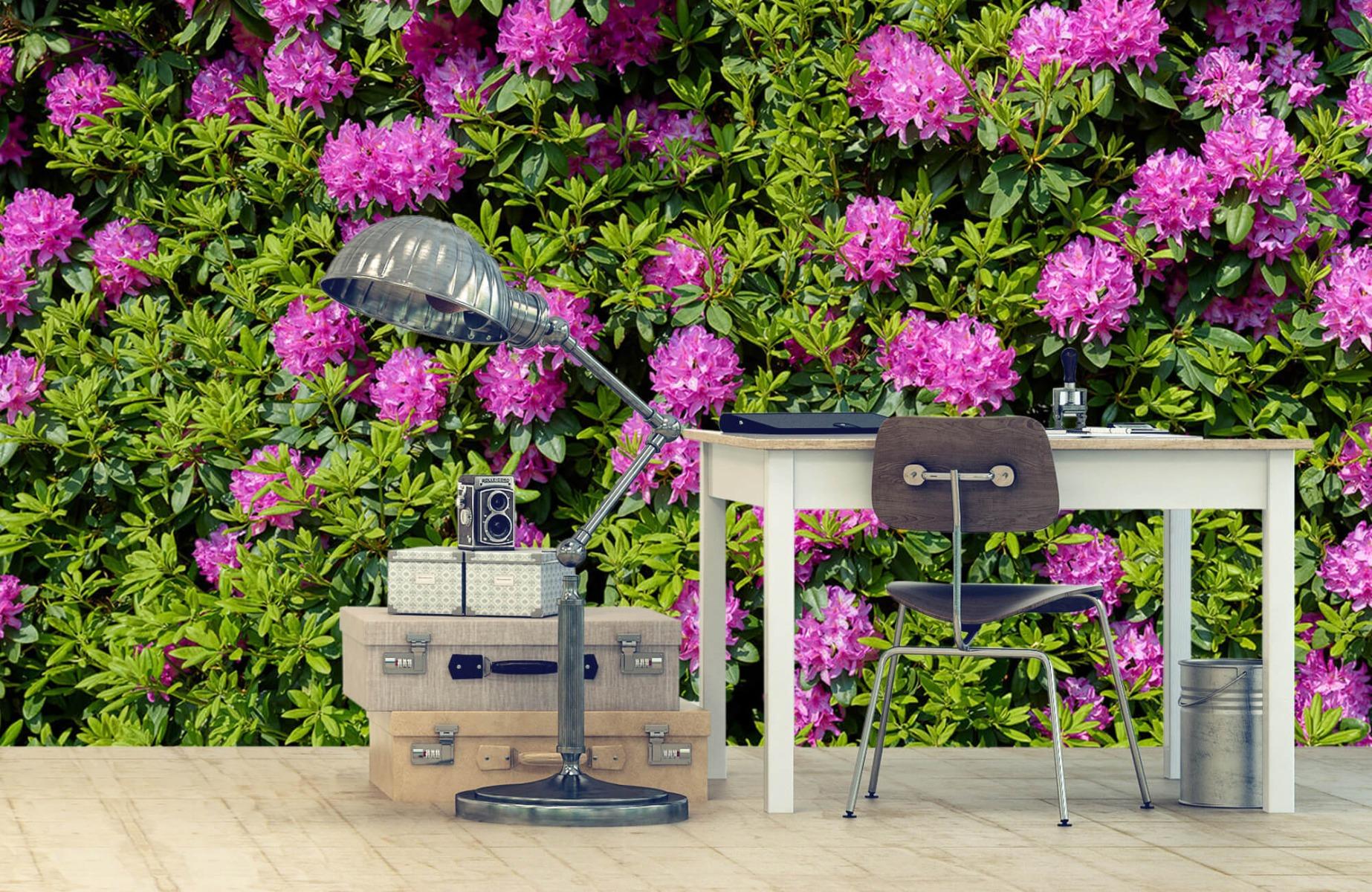 Bloemenvelden - Grote muur van rododendrons - Wallexclusive - Woonkamer 10