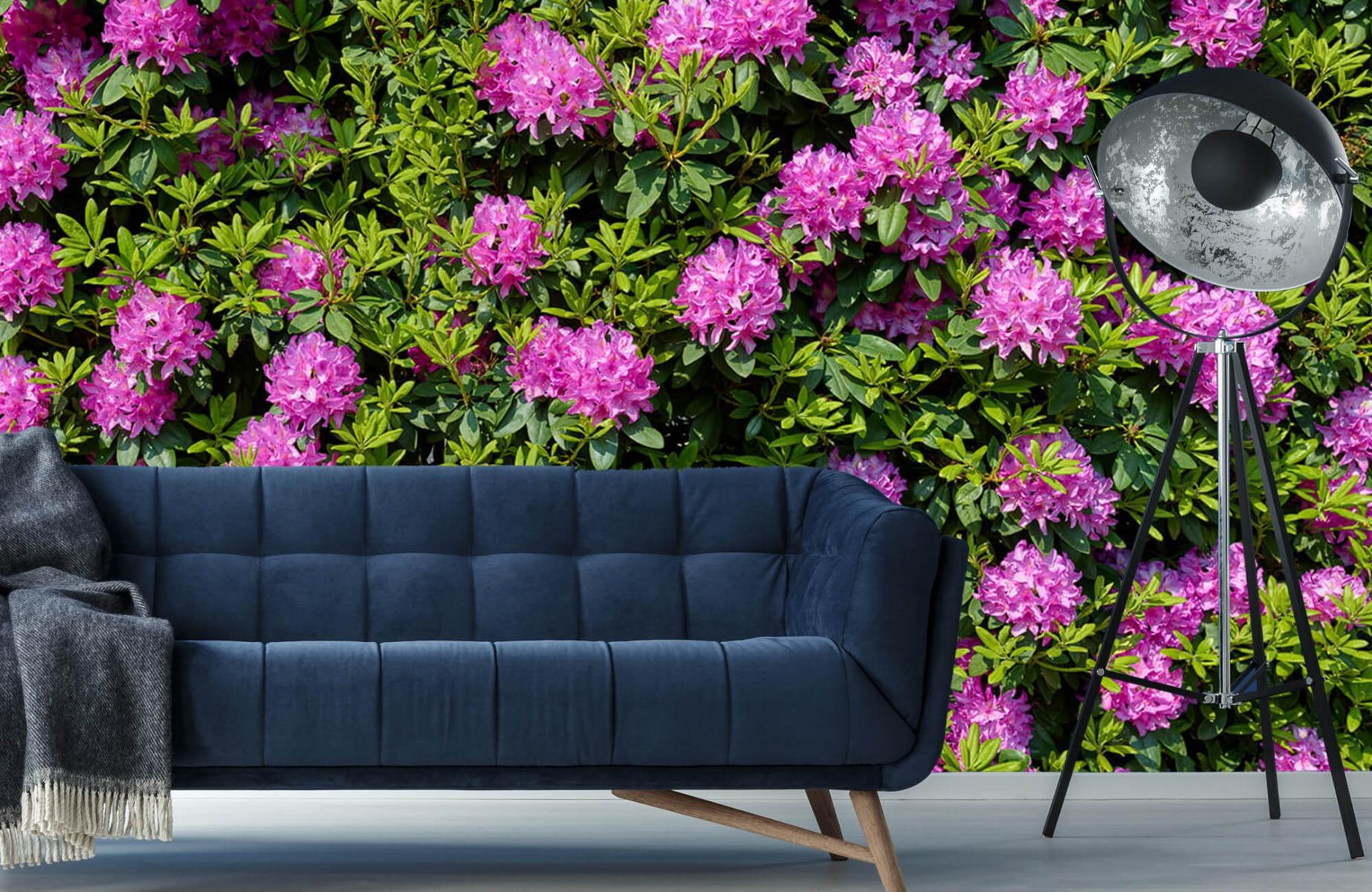 Bloemenvelden - Grote muur van rododendrons - Wallexclusive - Woonkamer 11